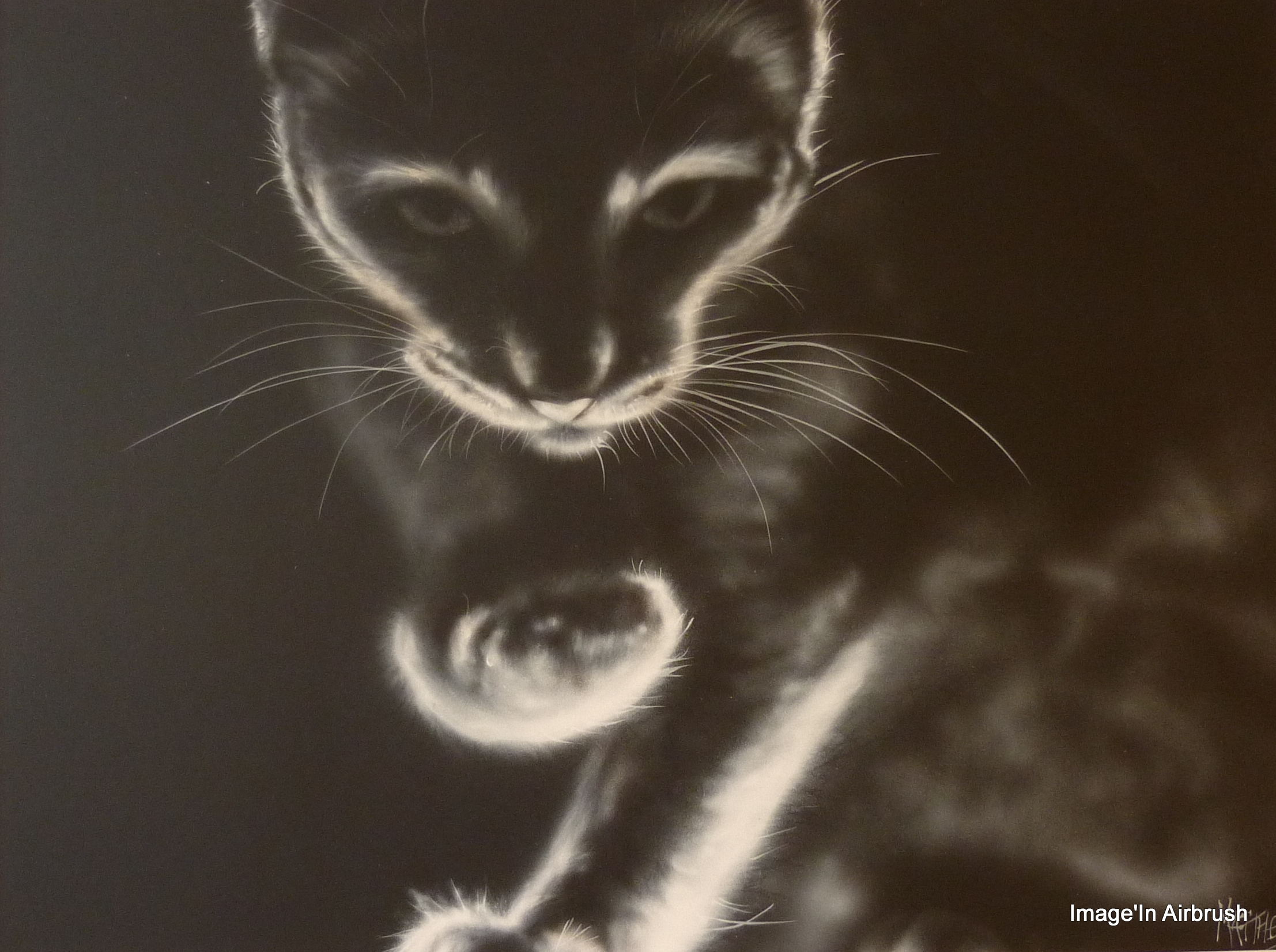 Portraits d'après photos animaux
