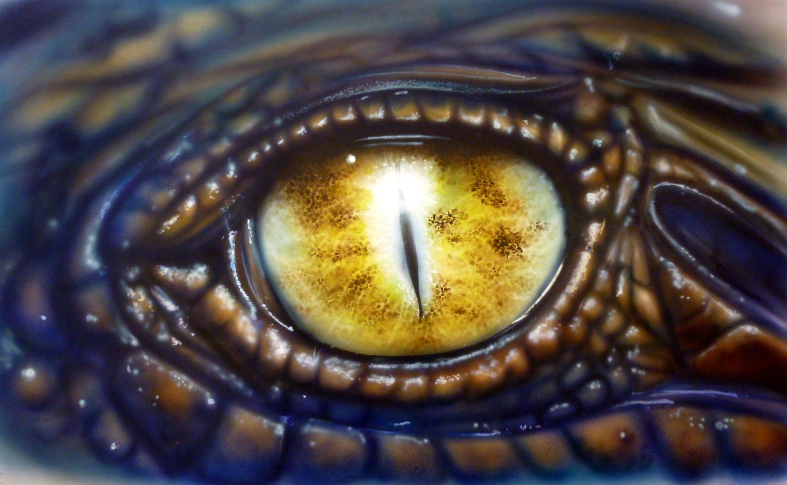 dans l'œil du croco
